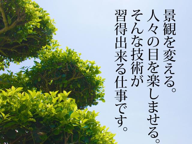 【造園工 求人募集】-堺市中区- 造園工事でなくても現場経験ある方優遇!
